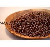 Mustard Seeds Brown