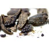 Black Cardamom Pod