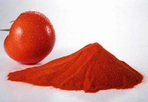 Fruit Powder spices